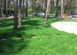 создание рулонного газона